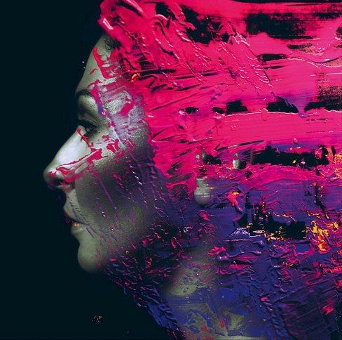 Steven wilson - Hand cannot erase (CD) - image 1 of 2