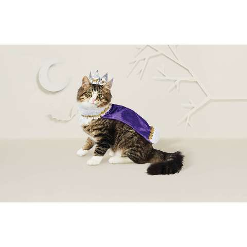 Cat Costume - King/Queen - Hyde & EEK! Boutique™