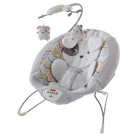 Deals on Fisher-Price Sweet Snugapuppy Dreams Deluxe Bouncer
