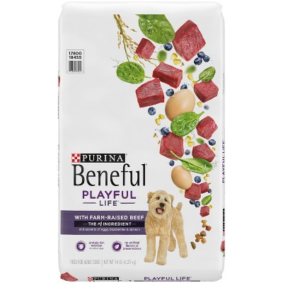 Purina Beneful Playful Life with Real Beef Adult Dry Dog Food - 14lbs