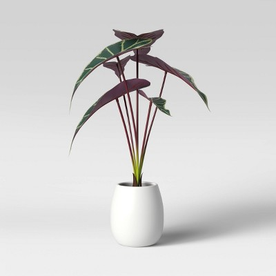 Faux Tropical Purple Diamond Leaf Plant in White Pot - Opalhouse™