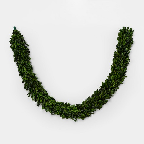 Garland Preserved Boxwood Leaf - Green - Smith & Hawken™ - image 1 of 1