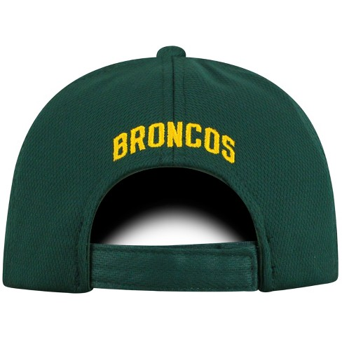 2bb7f8148ba6d8 NCAA Men's Cal Poly Pomona Broncos Baseball Hat - Gray : Target