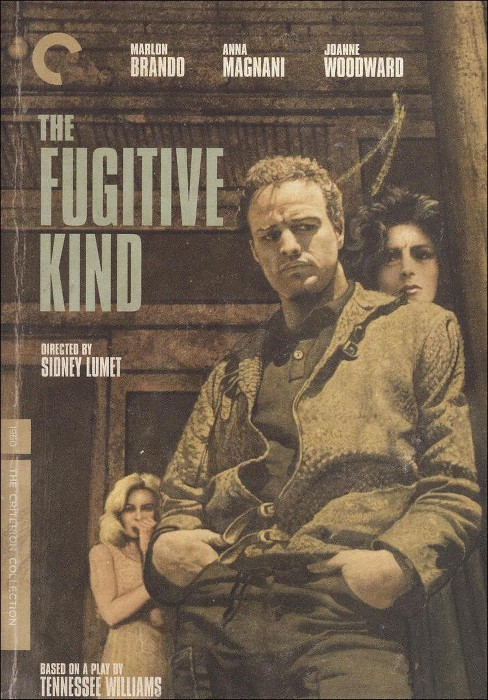 Fugitive kind (DVD) - image 1 of 1
