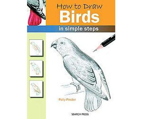 How To Draw Birds In Simple Steps Paperback Polly Pinder Target