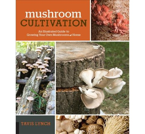 Mushroom Cultivation : An Illustrated Guide to Growing Your Own Mushrooms at Home -  (Paperback) - image 1 of 1