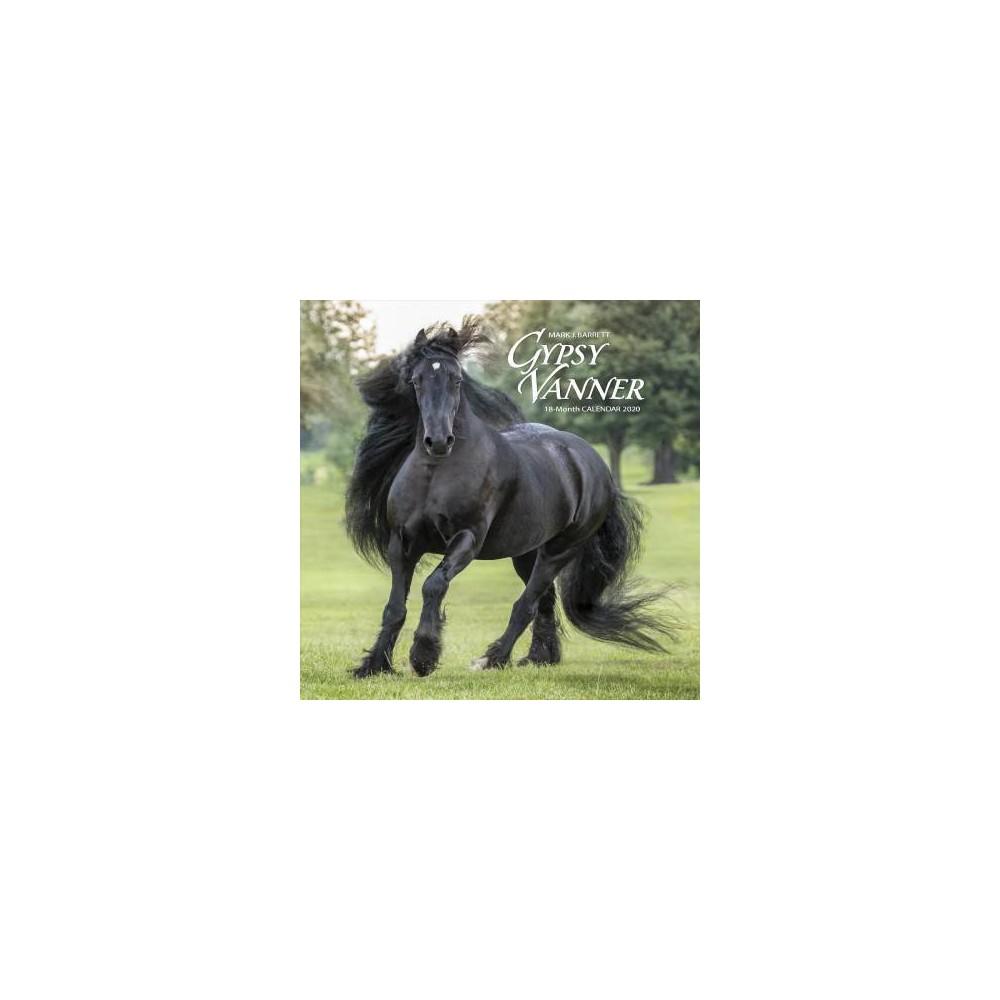 Gypsy Vanner Horse 2020 Calendar - (Paperback)