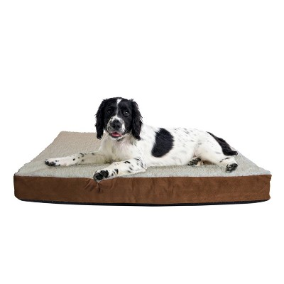 Paws & Pals Orthopedic Foam Dog Bed - Medium