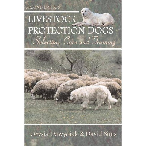 Livestock Protection Dogs - by  David Sims & Orysia Dawydiak (Paperback) - image 1 of 1