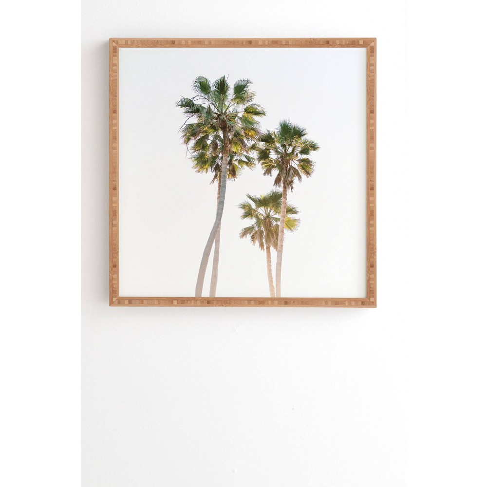 "Image of ""12"""" x 12"""" Bethany Young Photography California Palms Framed Wall Art Green - Deny Designs, Size: 12""""x12"""""""