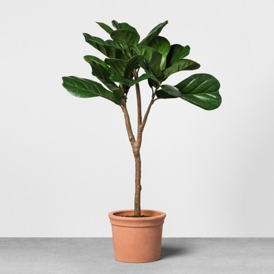 Faux Fiddle Leaf Plant in Terracotta Pot Medium - Hearth & Hand™ with Magnolia