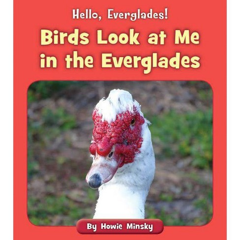 Birds Look at Me in the Everglades - (Hello, Everglades!) by  Howie Minsky (Paperback) - image 1 of 1