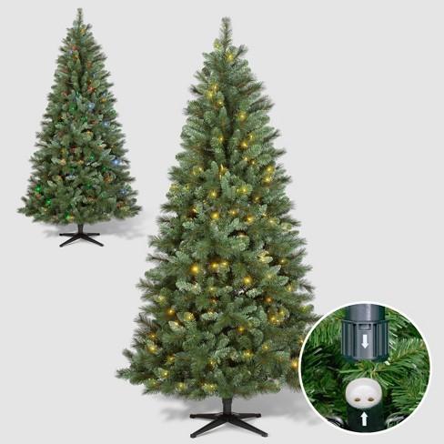 Philips 7ft Pre-lit Artificial Christmas Tree Douglas Fir Auto Connect Bi-color LED Lights - image 1 of 4