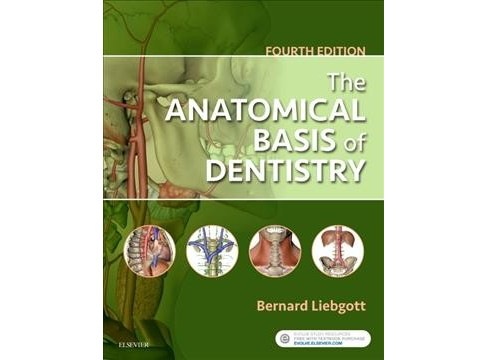 Anatomical Basis of Dentistry -  by Ph.D. Bernard Liebgott (Paperback) - image 1 of 1