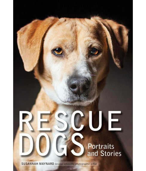 Rescue Dogs : Portraits and Stories (Paperback) (Susannah Maynard) - image 1 of 1