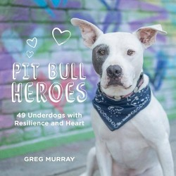 Pit Bull Heroes - by  Greg Murray (Hardcover)