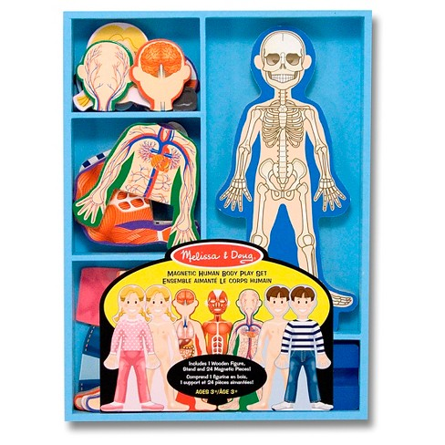 Melissa & Doug® Magnetic Human Body Anatomy Play Set and Storage Tray - 24pc - image 1 of 2