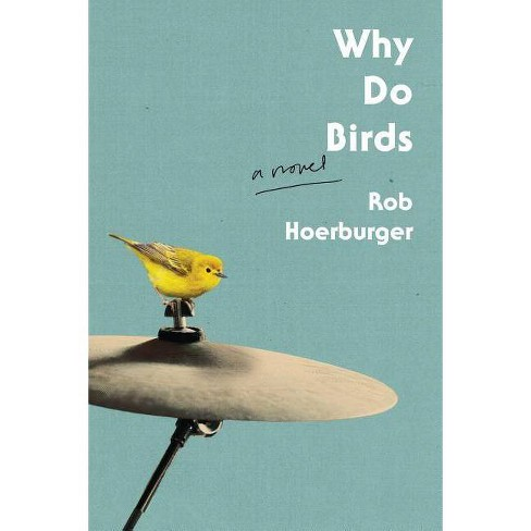 Why Do Birds - by  Rob Hoerburger (Paperback) - image 1 of 1