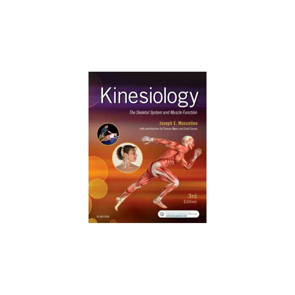 Kinesiology : The Skeletal System and Muscle Function (Paperback) (Joseph E. Muscolino)