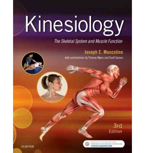 Kinesiology : The Skeletal System and Muscle Function (Paperback) (Joseph E. Muscolino) - image 1 of 1