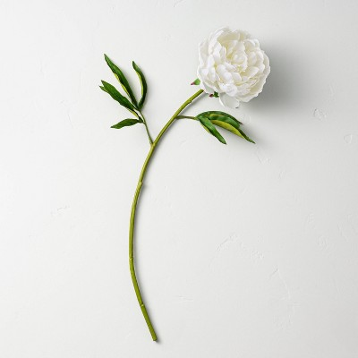 """22"""" Faux White Peony Flower Stem - Hearth & Hand™ with Magnolia"""