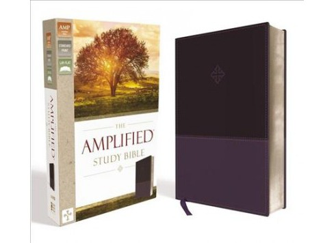 Amplified Study Bible : Amplified, Purple, Leathersoft (Large Print) (Paperback) - image 1 of 1