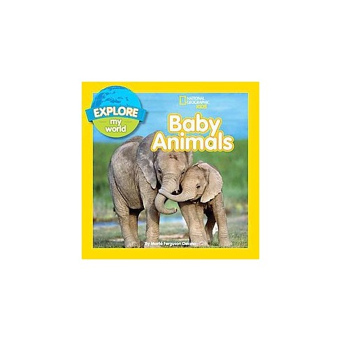 Explore My World Baby Animals - by  Marfe Ferguson Delano (Paperback) - image 1 of 1