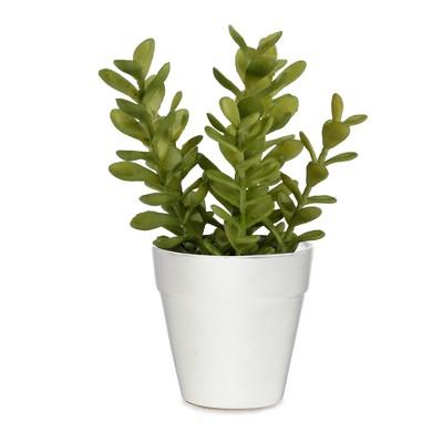 Artificial Succulent Arrangement in Ceramic Pot Green 9 - Lloyd & Hannah