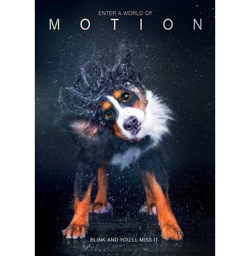 Motion (DVD) - image 1 of 1