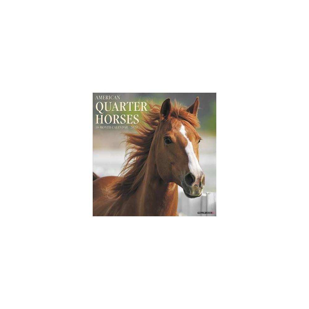 American Quarter Horses 2020 Calendar - (Paperback)