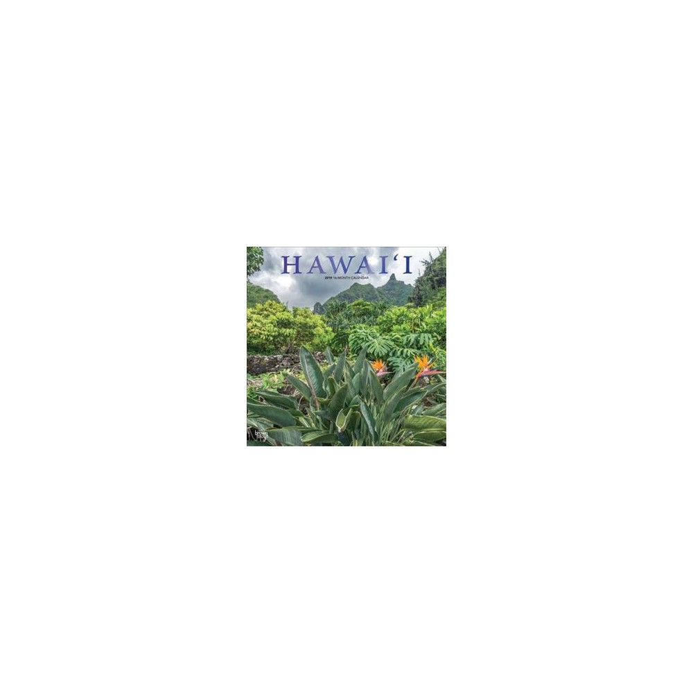 Hawai'i 2019 Calendar - (Paperback)