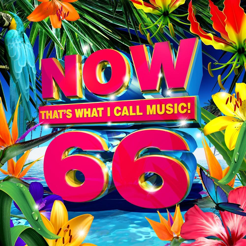 Various Artists - Now 66, Pop Music