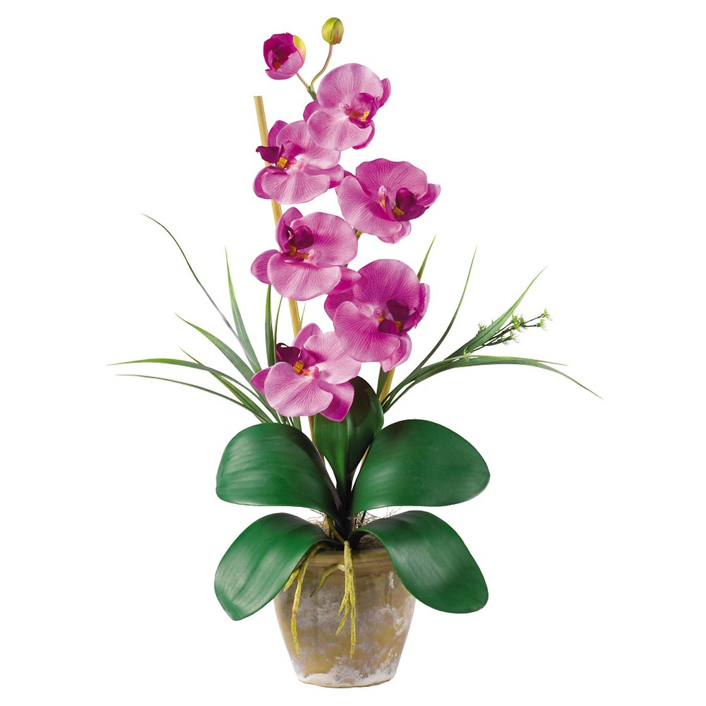 Nearly Natural Phalaenopsis Silk Orchid Flower Arrangement Mauve, Nude Pink Maintaining delicate orchids never looked this easy with the Nearly Natural Phalaenopsis Silk Orchid Flower Arrangement Mauve. With long rich green leaves fanning out in intricate geometric patterns with vibrant mauve orchids, it's no wonder that this faux arrangement brings a bit of tropic decor to any living arrangement. It is made of silk to give natural look and comes with ceramic pot and soil. Color: Nude Pink.