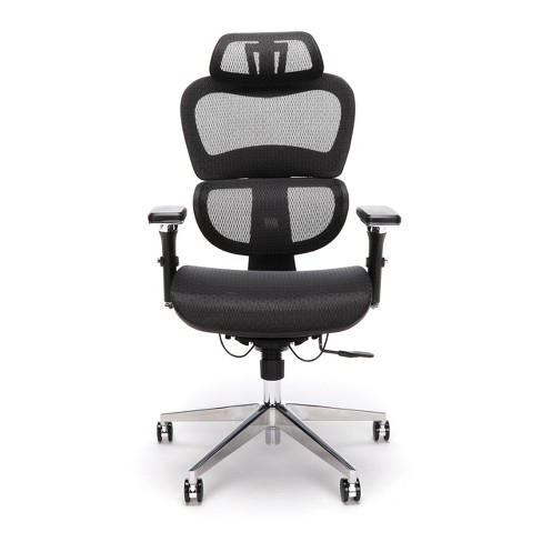 Ergo Office Chair Featuring Mesh Back
