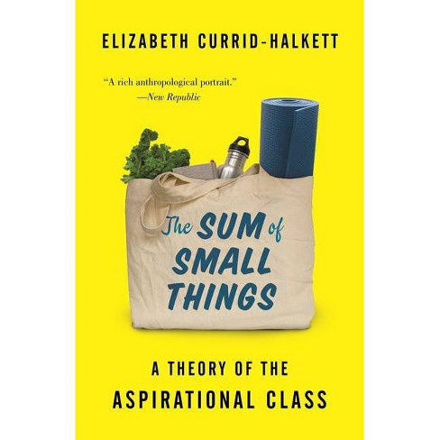 The Sum of Small Things - by  Elizabeth Currid-Halkett (Paperback) - image 1 of 1
