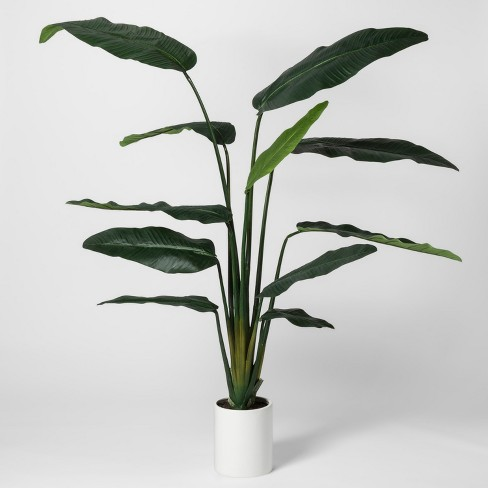 """80"""" x 30"""" Artificial Banana Tree In Pot Green/White - Project 62™ - image 1 of 3"""
