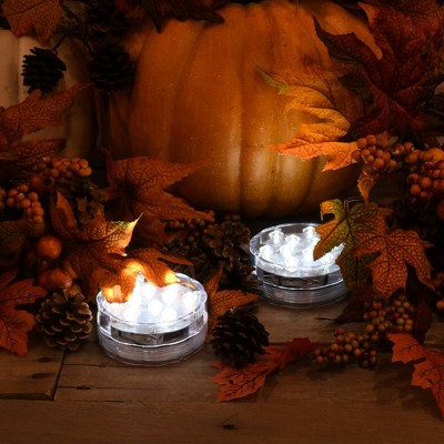 Lumabase 2ct Battery Operated LED White Halloween Submersible Lights with Remote Control