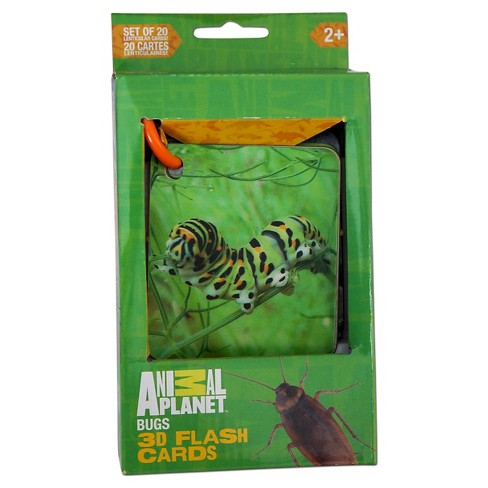 Smart Play Animal Planet Bugs 3D Flash Cards - image 1 of 2