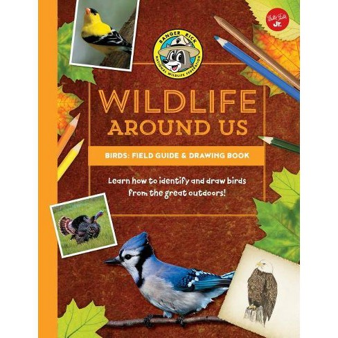 Birds--Field Guide & Drawing Book - (Ranger Rick's Wildlife Around Us) (Hardcover) - image 1 of 1