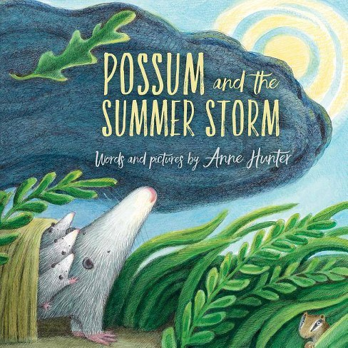 Possum and the Summer Storm - by  Anne Hunter (Hardcover) - image 1 of 1