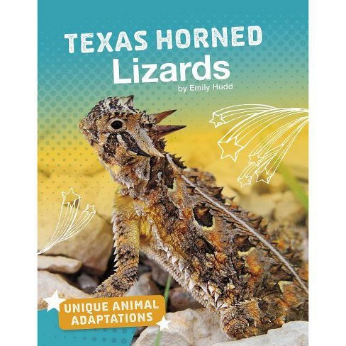 Texas Horned Lizards - (Unique Animal Adaptations) by  Emily Hudd (Paperback) - image 1 of 1