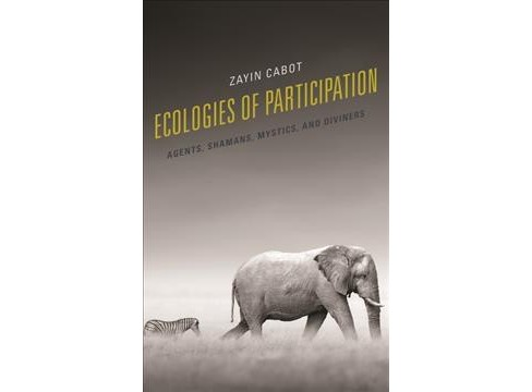 Ecologies of Participation : Agents, Shamans, Mystics, and Diviners -  by Zayin Cabot (Hardcover) - image 1 of 1