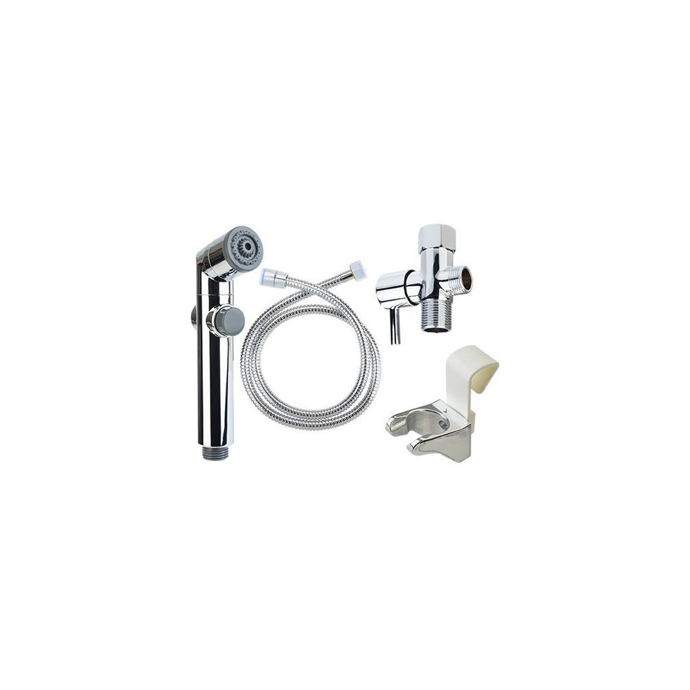 Image of Clean Spa Hand Held Bidet Sprayer - Brondell, Silver