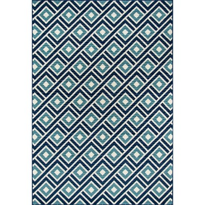 Indoor/Outdoor Blue Squares Rug