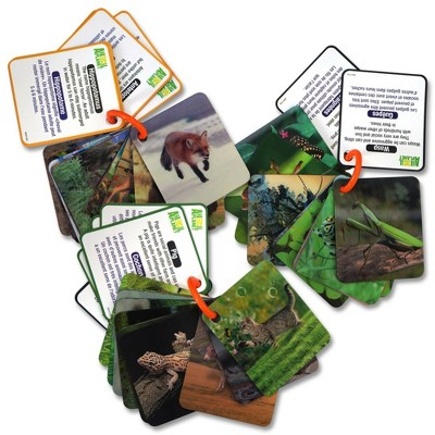 Smart Play Animal Planet 3D Creatures Flash Cards Set