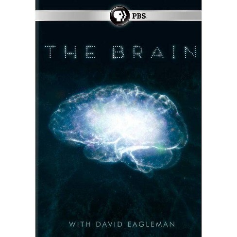 The Brain With David Eagleman (DVD) - image 1 of 1