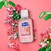 Suave Honey Suckle with Aloe Hand Sanitizer - Pink - Trial Size - 2 oz - image 3 of 4