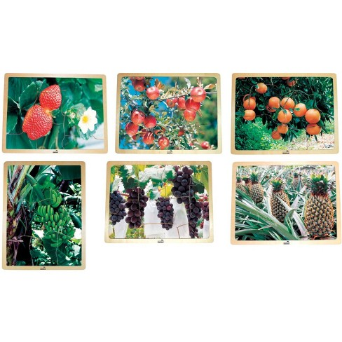 School Specialty Fruit Puzzles, set of 6 - image 1 of 1