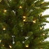 4ft Slim Christmas Tree with Urn & Clear LED Lights - Nearly Natural - image 3 of 3