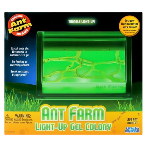 Ant Farm Light Up Gel Colony Target